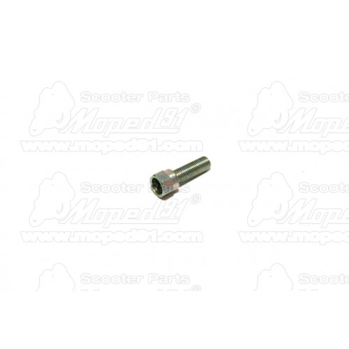 sárvédő hátsó SIMSON ROLLER SR50 / ROLLER SR80 (453400) Német Minőség